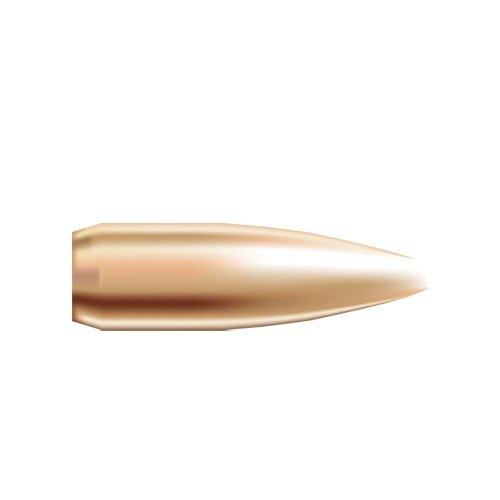 "22 Caliber (0.224"") 52gr Hollow Point Boat Tail 250/Box"