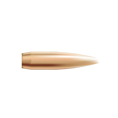 "6mm (0.243"") 105gr Hollow Point Boat Tail 250/Box"